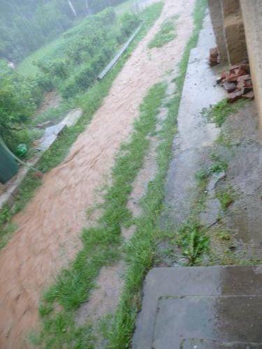 Pořad Prší